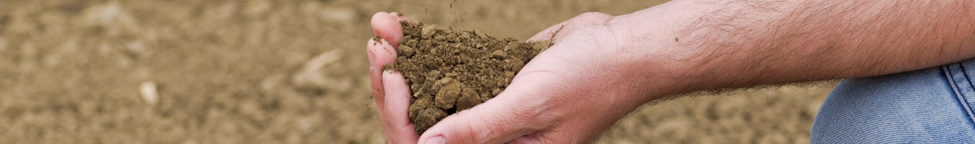 Image of retailer testing soil quality