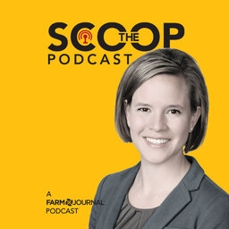 The Scoop Podcast