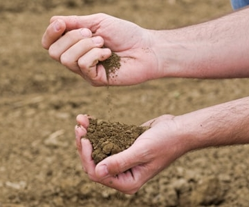 Person playing with soil